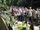 Alcuni momenti del Chelsea Flower Show 2010