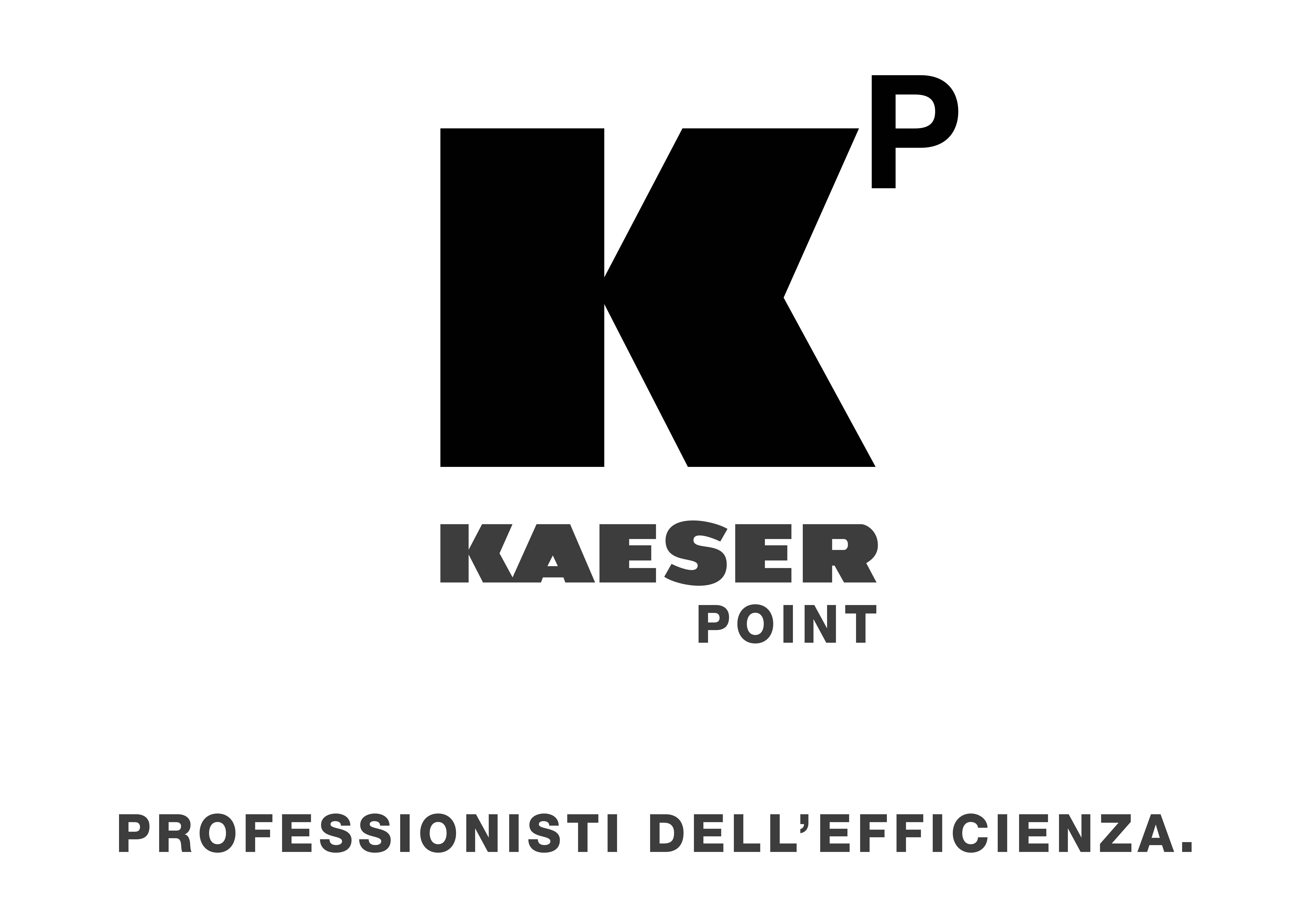logo-kaeser-point