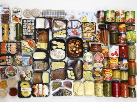 cibo-1
