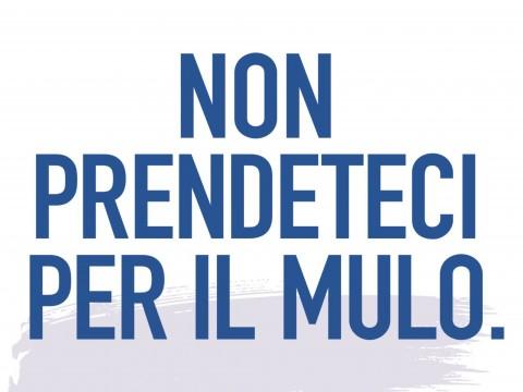 non-prendeteci-per-il-mulo_pagina