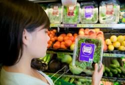etichetta_alimenti-jpg