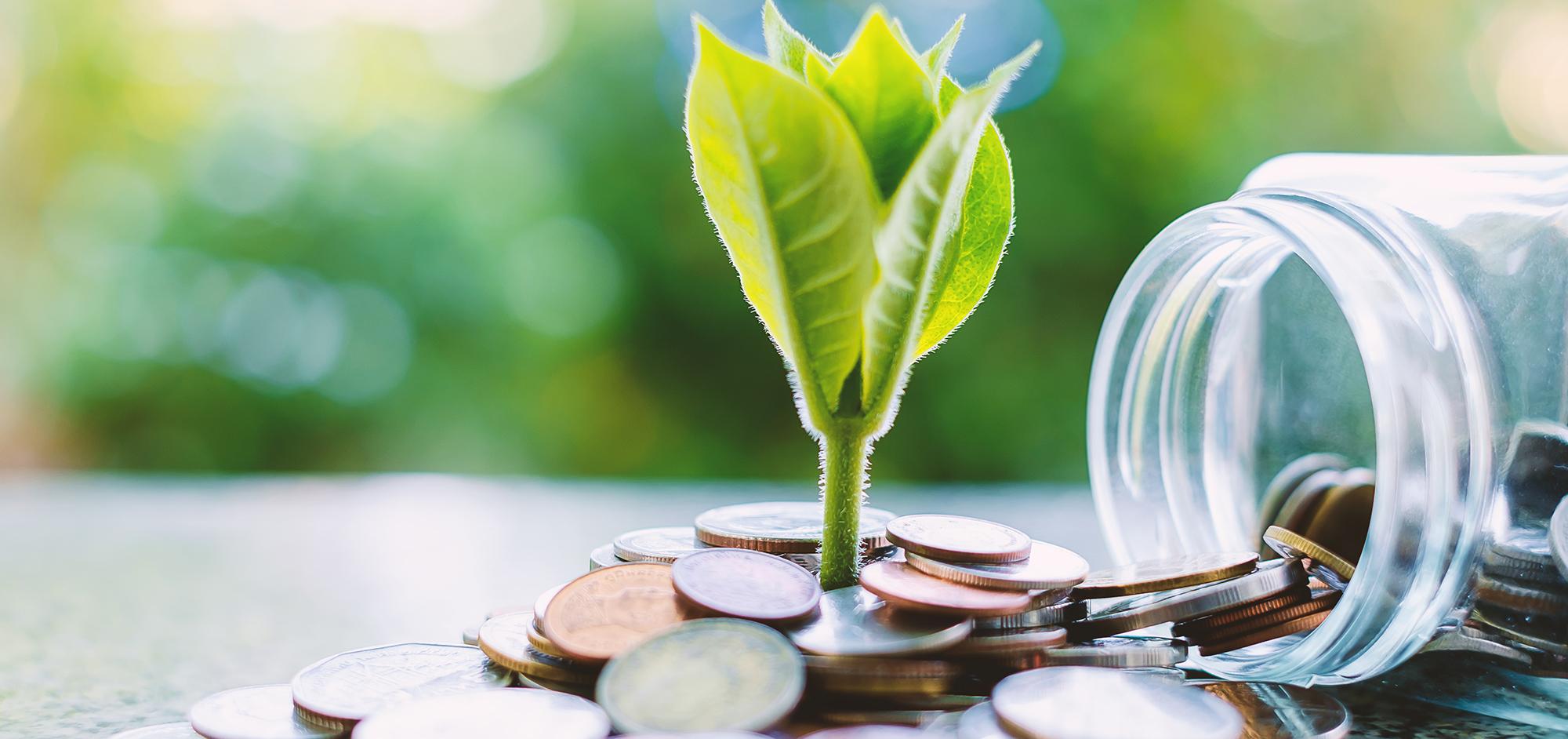 Welfare - Salute e Previdenza Complementare